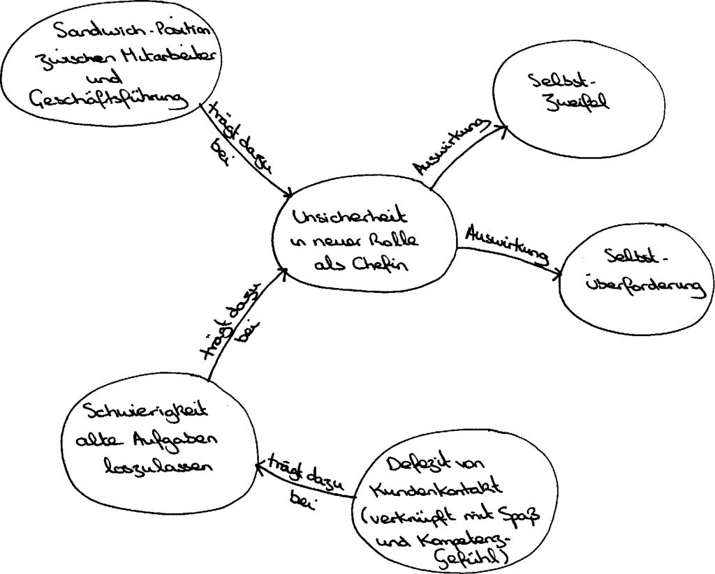 Ideographische Systemmodellierung von Schiepek